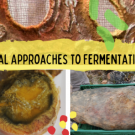 Banner for Radical and Relational Approaches to Fermentation and Food Sovereignty Cluster
